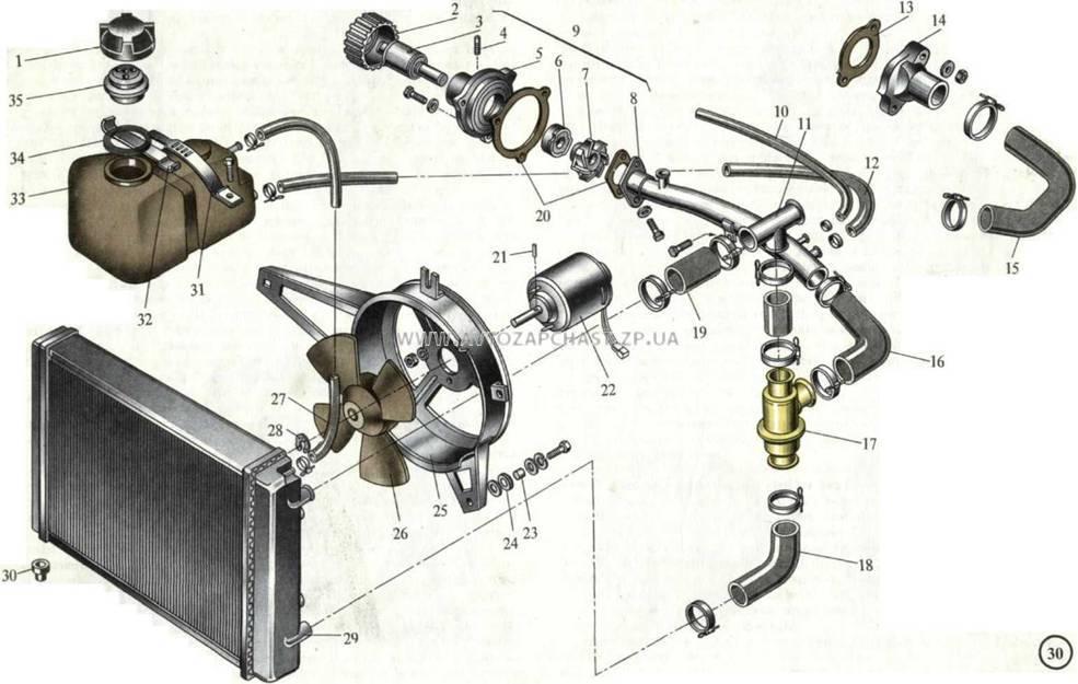 Система охлаждения таврия схема фото 147